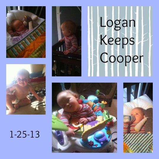1-25-13 Logan Watches Cooper